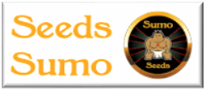 Sumo Seeds - Officially Registered - Cannabis Seed Retailer - Just Feminized Seed Bank Official Online Dealers
